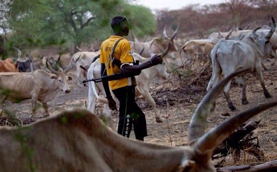 Herdsmen worse than Boko Haram –Cleric