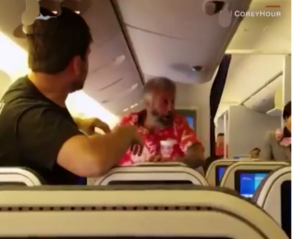 Confusion as plane passengers engage in fist fight