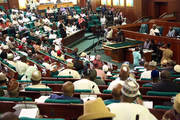 Image result for 2017 budget: Reps raise concerns over 15% capital releases