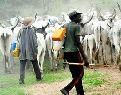 Cattle colony is strange to us, Oyo govt says